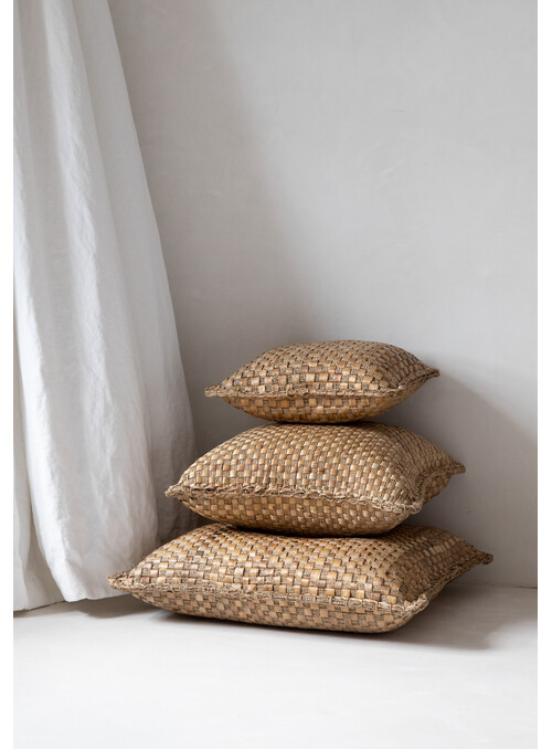 COUSSIN HYACINTH - M