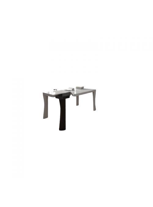 TABLE DE BUREAU PUNK