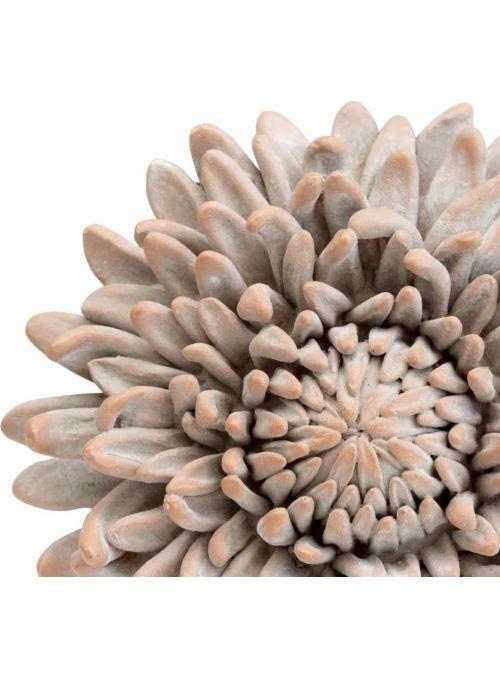 Serafina fleur de douche...